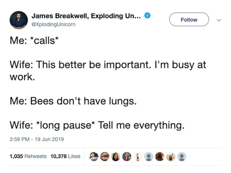 bees don't have lungs marriage tweet