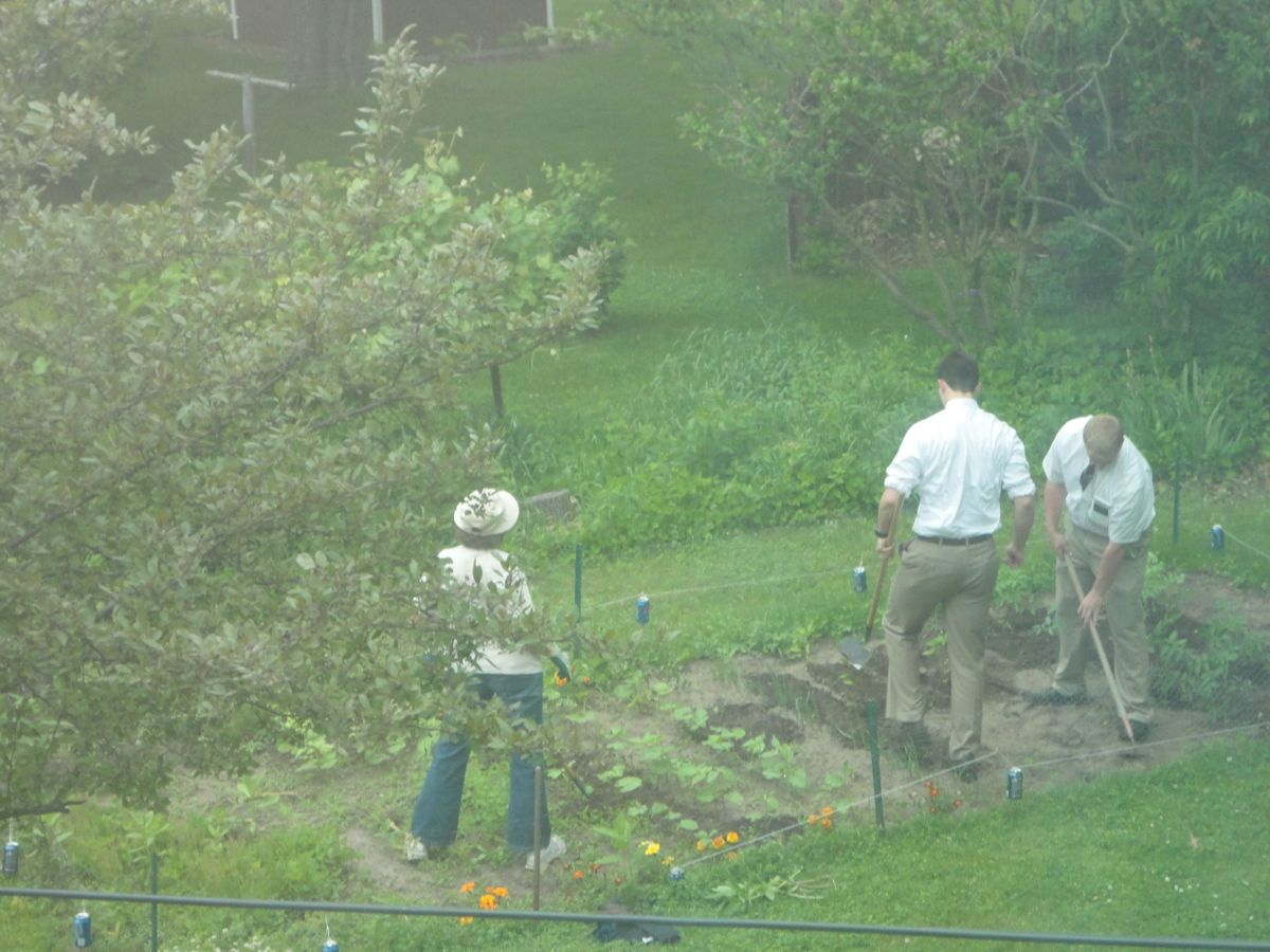 mormons helping mom in the garden