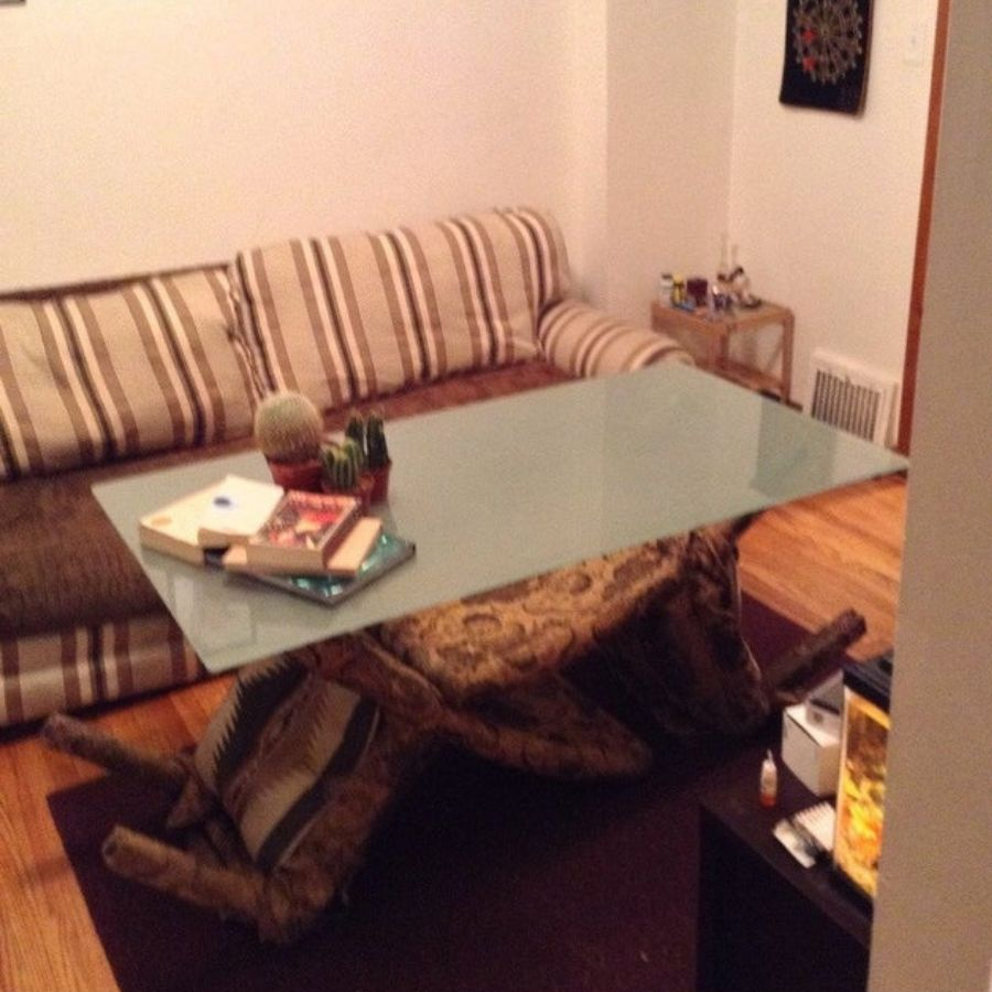 makeshift coffee table with glass and chair
