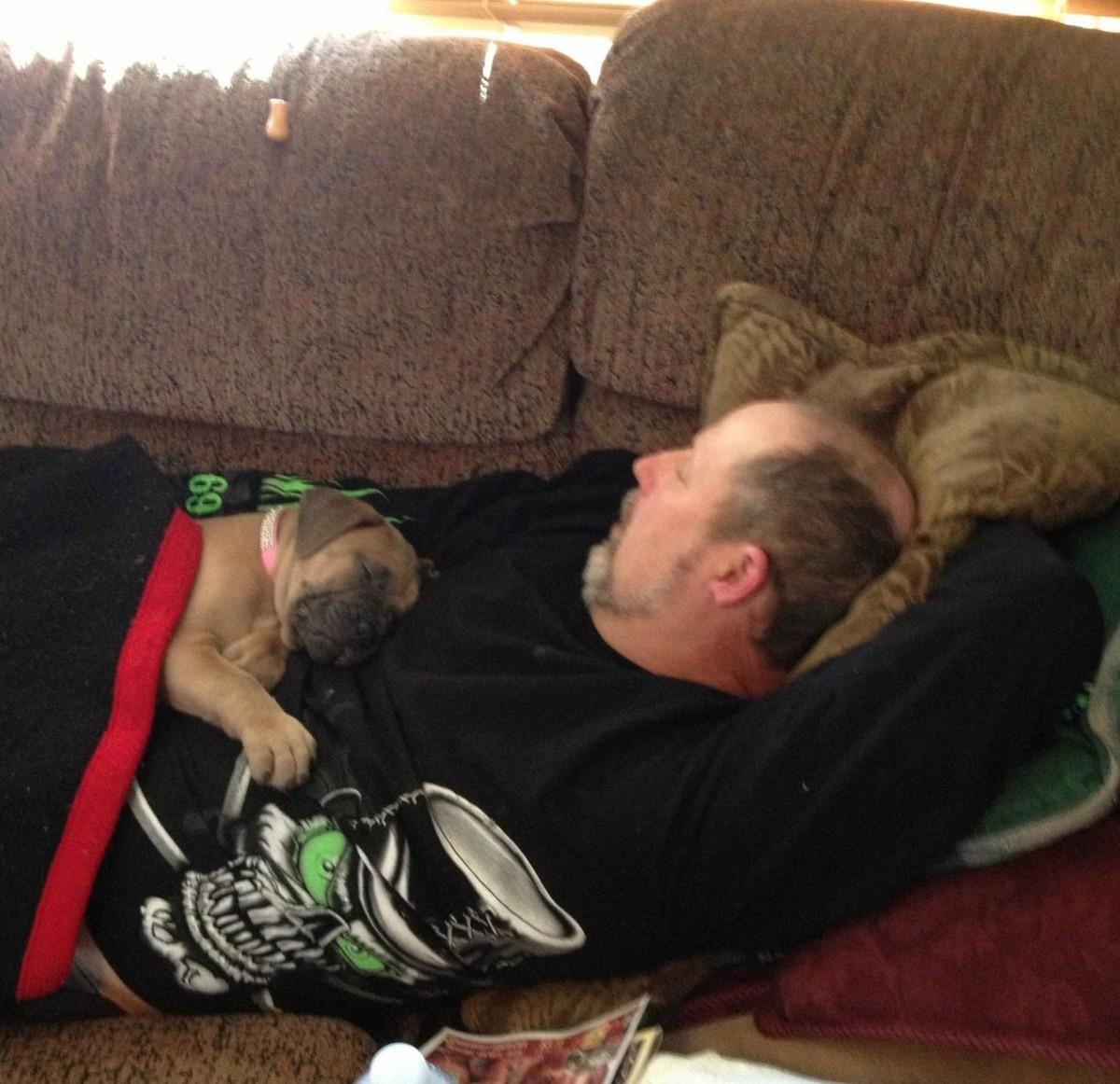 dog and dad napping on couch