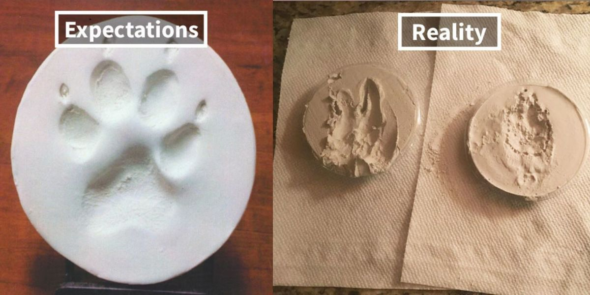 pet DIY paw print fail
