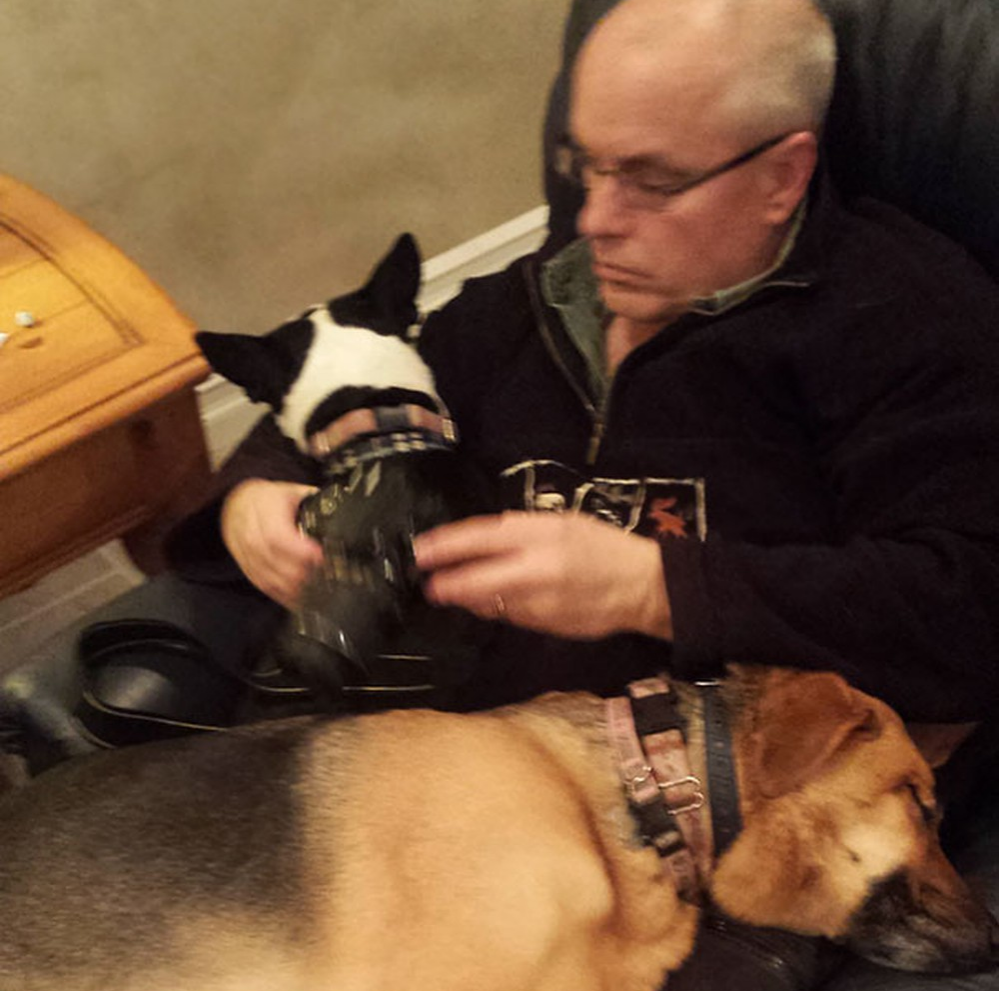 reclining dogs and dad