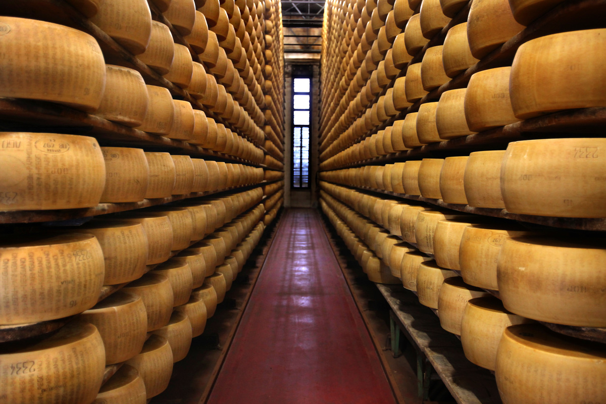 wheels of parmesan cheese in Santa Croce, Italy