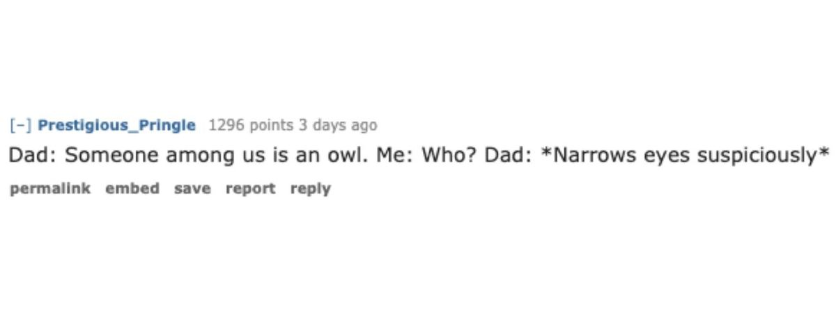 dad joke about owls