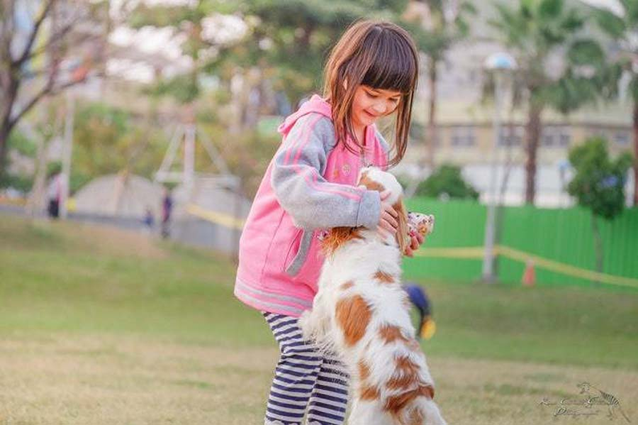a girl plays with a dog in a park
