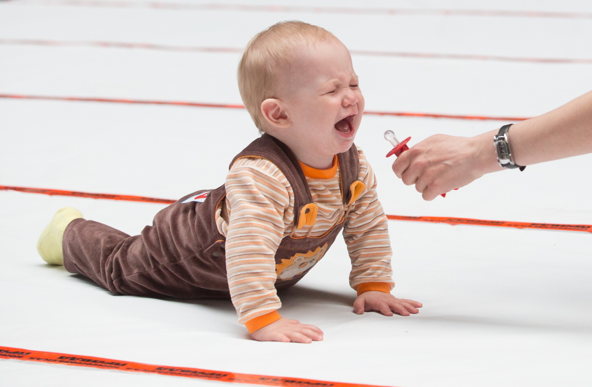 Baby crawling race in Omsk