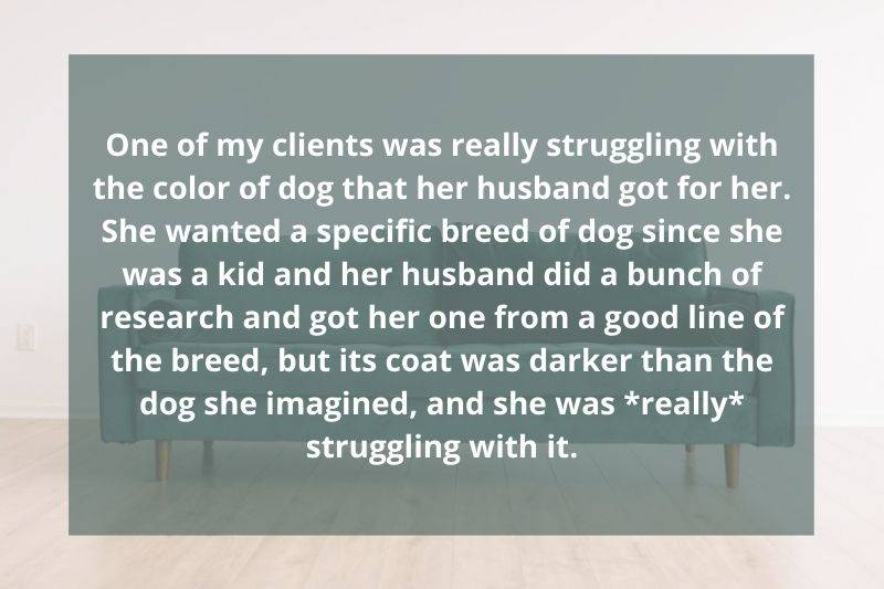 client was struggling with the color of dog her husband got her