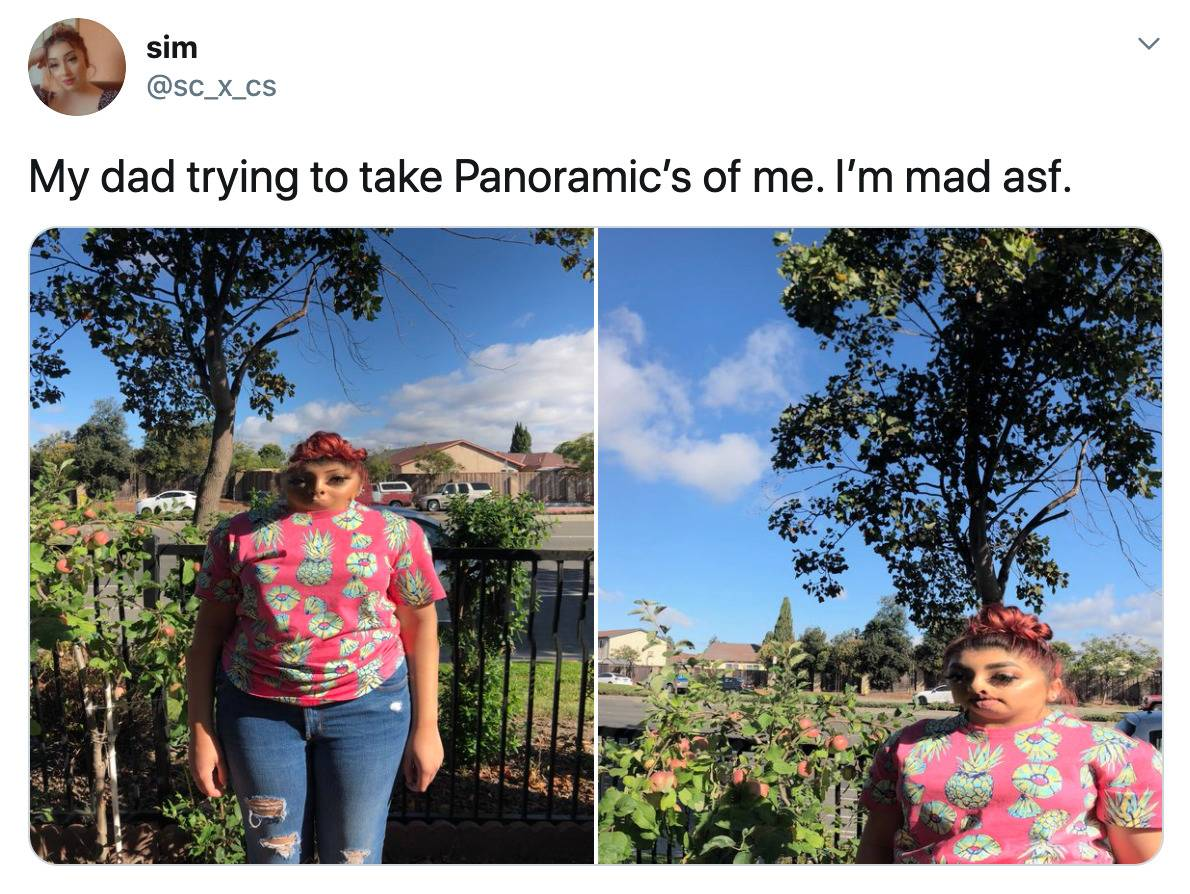 dad takes horrible, distorted panorama photographs of daughter
