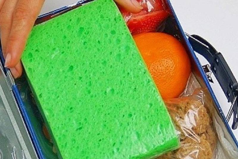 spong keeping kid's lunch box cold