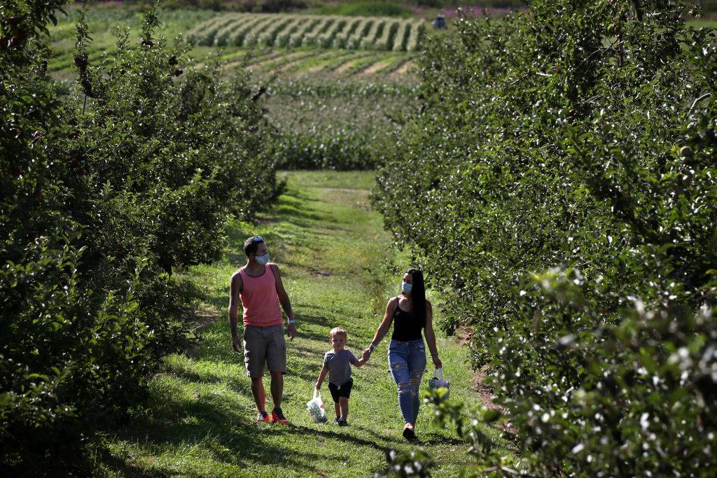 A family walks through the orchard with their son