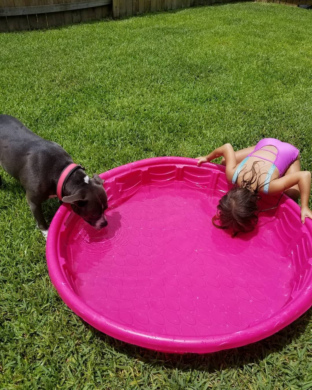 kid drinking from a dog pool