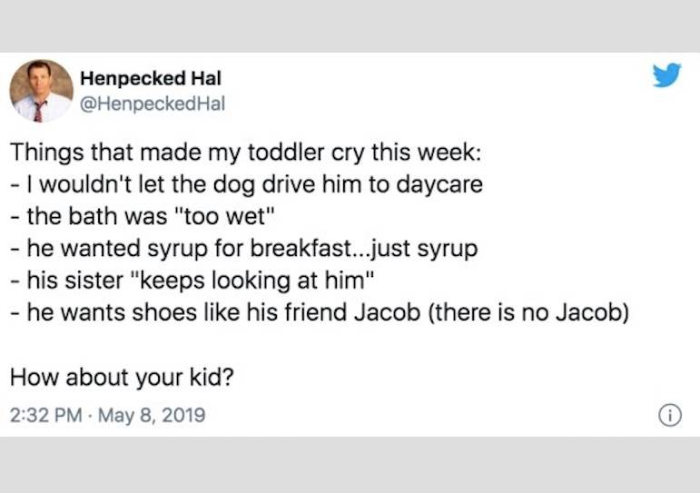 tweet: Things that made my toddler cry this week: - I wouldn't let the dog drive him to daycare - the bath was