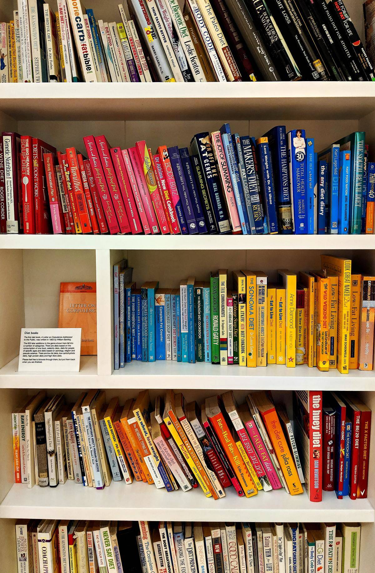 books on shelf organized by color