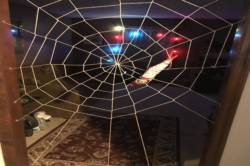 elf on a shelf in a spider web